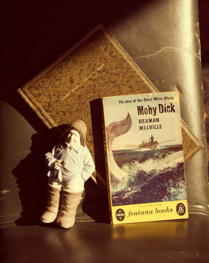 Foto af bog - Moby Dick